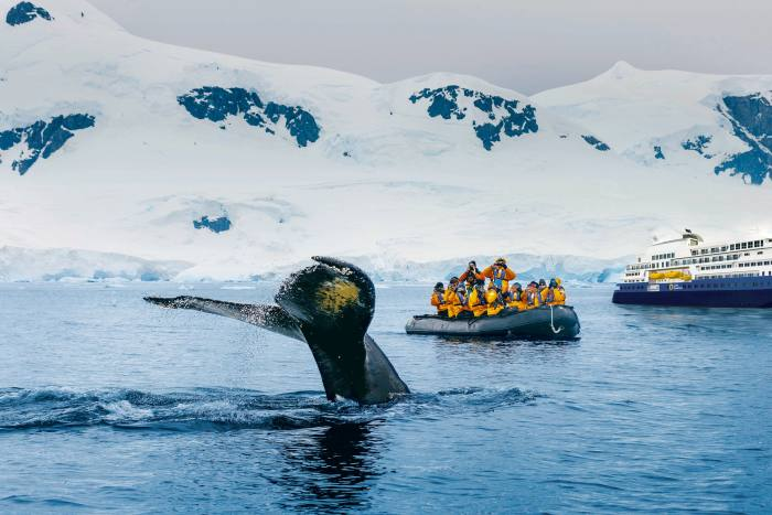 A Quark Expeditions tour to see humpback whales