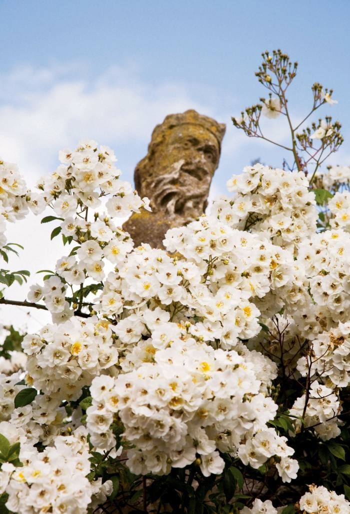 """A 17th-century statue of Neptune swathed in """"Bobbie James""""rambling roses at Hanham Court, nearBristol, as seen in Isabel and Julian Bannerman's book Landscape of Dreams"""