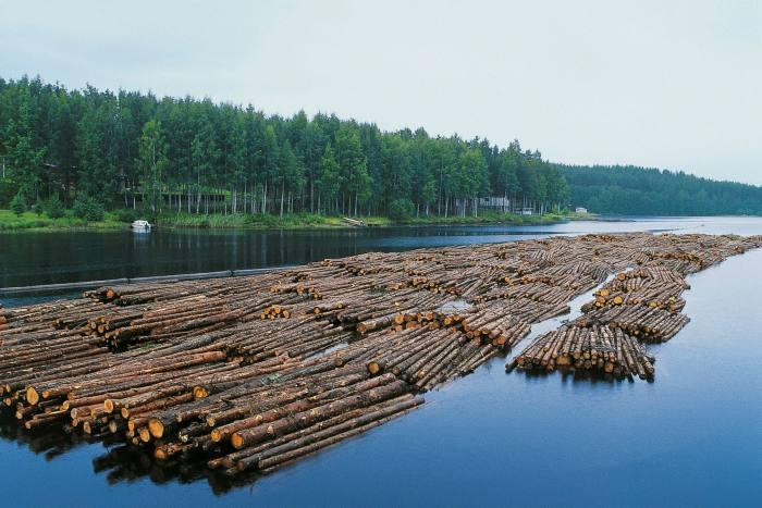 Timber rafting on Lake Saimaa in Finland