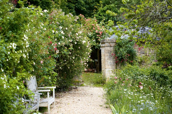 The Moor Wood estate, in Gloucestershire, is home to the National Collection of Rambler Roses