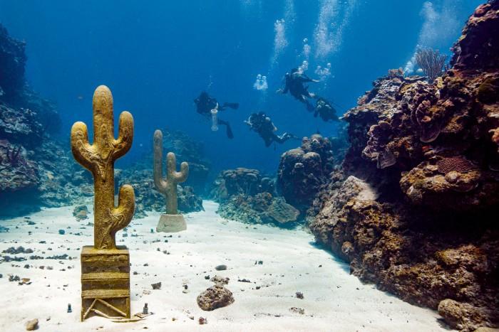 Claudia Comte's Underwater Cacti, off Portland, Jamaica
