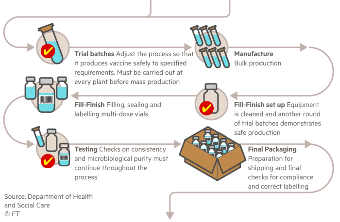 Infografía que explica el proceso de fabricación de la vacuna.