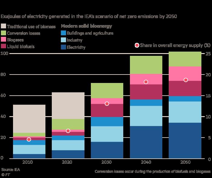 Big Read: Bioenergy could meet 20% of total energy need