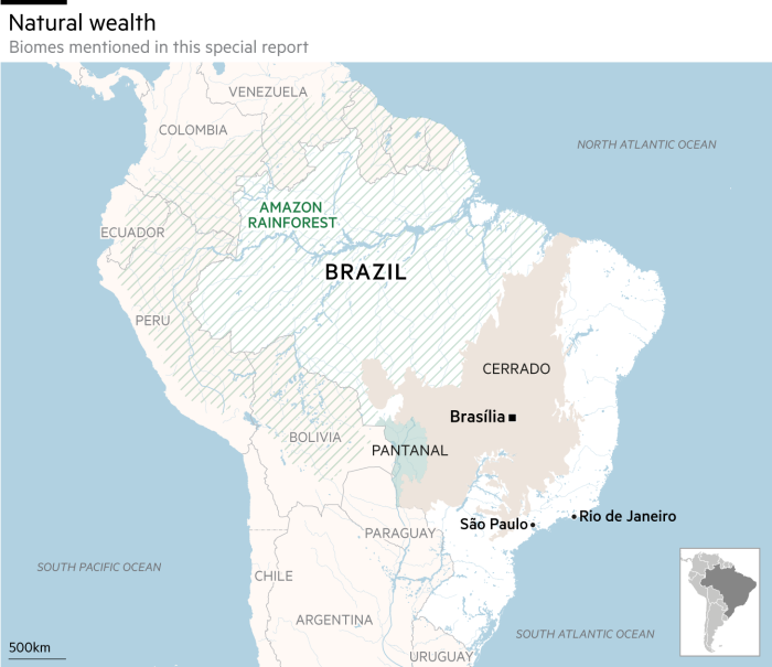 Special report: Brazil and its biomes