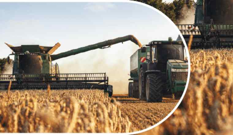 Promotional image for the event 'Transforming the Food System' presented by FT Live