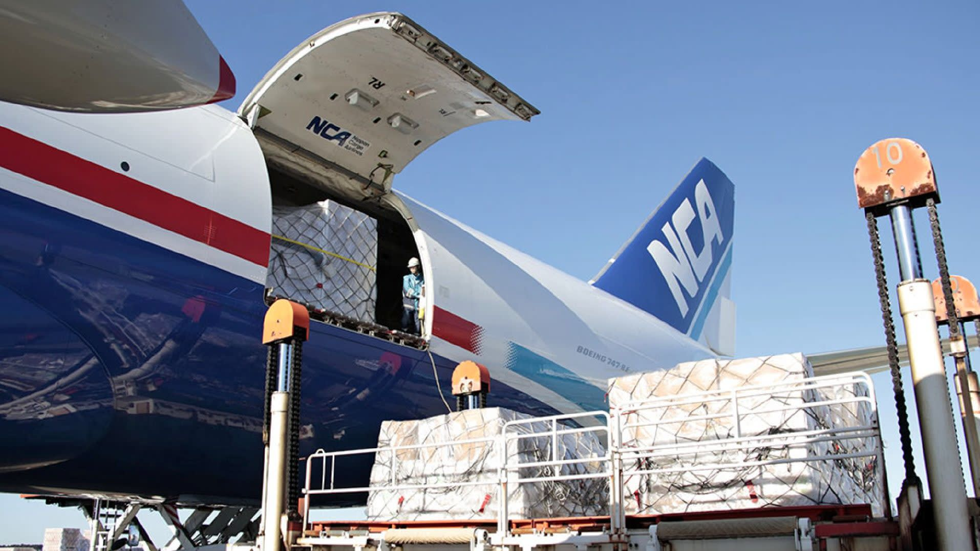 An inaccurate servicing record prompted Nippon Cargo Airlines to suspend all flights for at least a week while it combs through its logs.