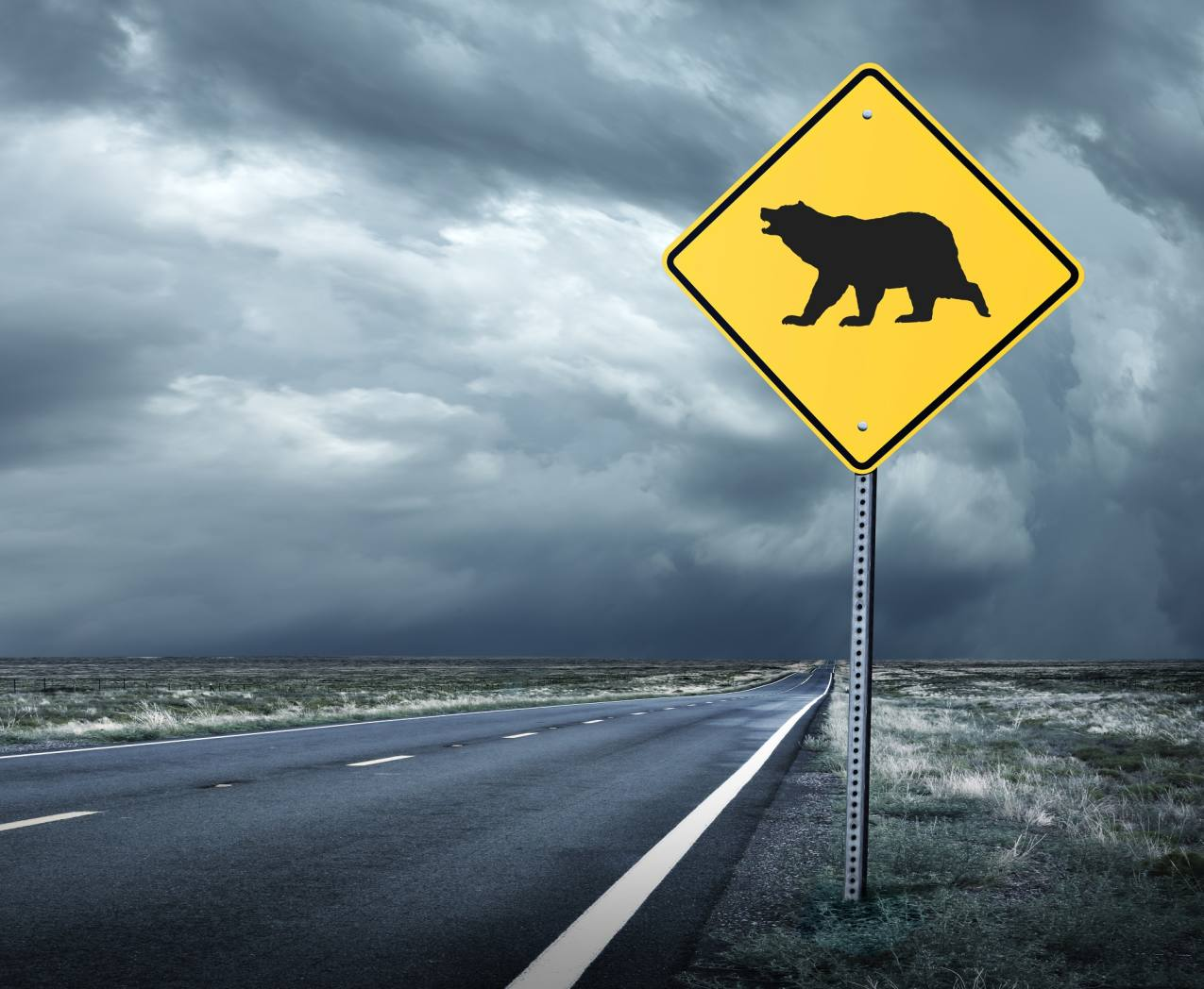 Bear sign on open road