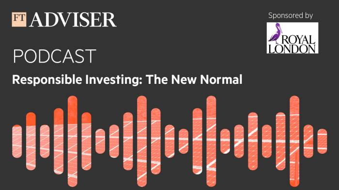 Welcome to Responsible Investing: The New Normal