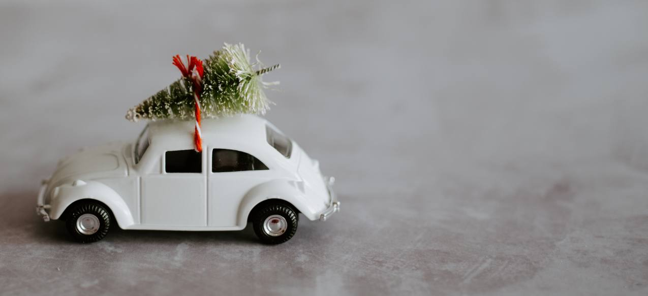 Car with a Christmas tree strapped to the roof