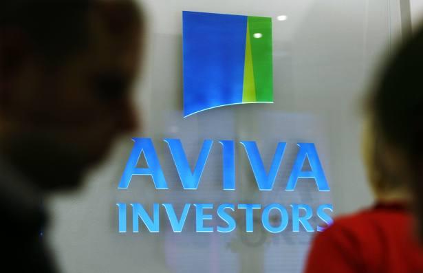 De Bruin and Saldanha to manage Aviva fund after Parkinson departure