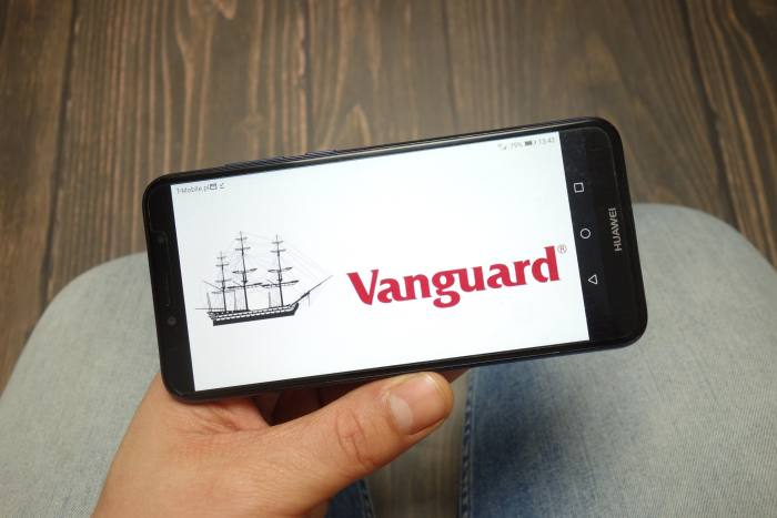 Vanguard eyes 'no-frills' advice