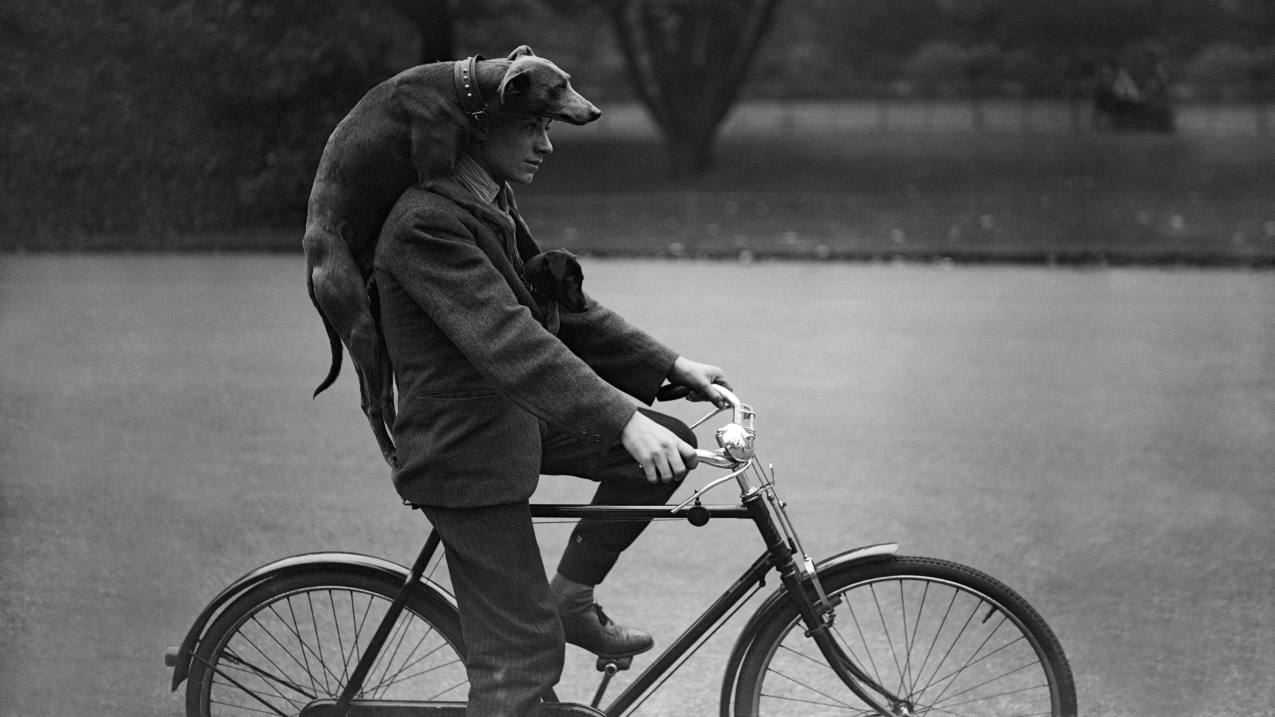Man riding a bike with a dog on his shoulders