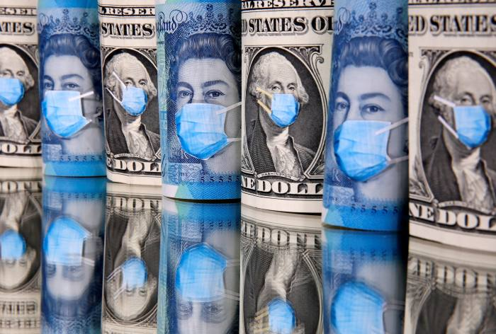 Stout says pandemic may have upended investing
