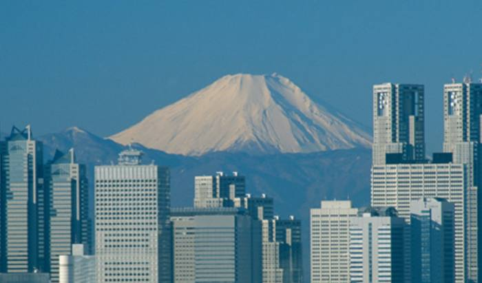 Japan trust seeks more cash for 'opportunities'