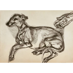 Pluto Aged Twelve by Lucian Freud, £40,000-£60,000