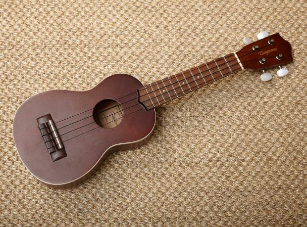 Theo Fennell's ukulele
