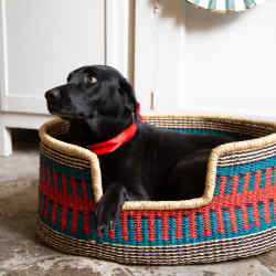 Wovenology dog Bolga basket, from £100