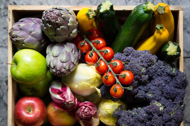 The summer menu features seasonal ingredients including tomatoes, courgettes and artichokes