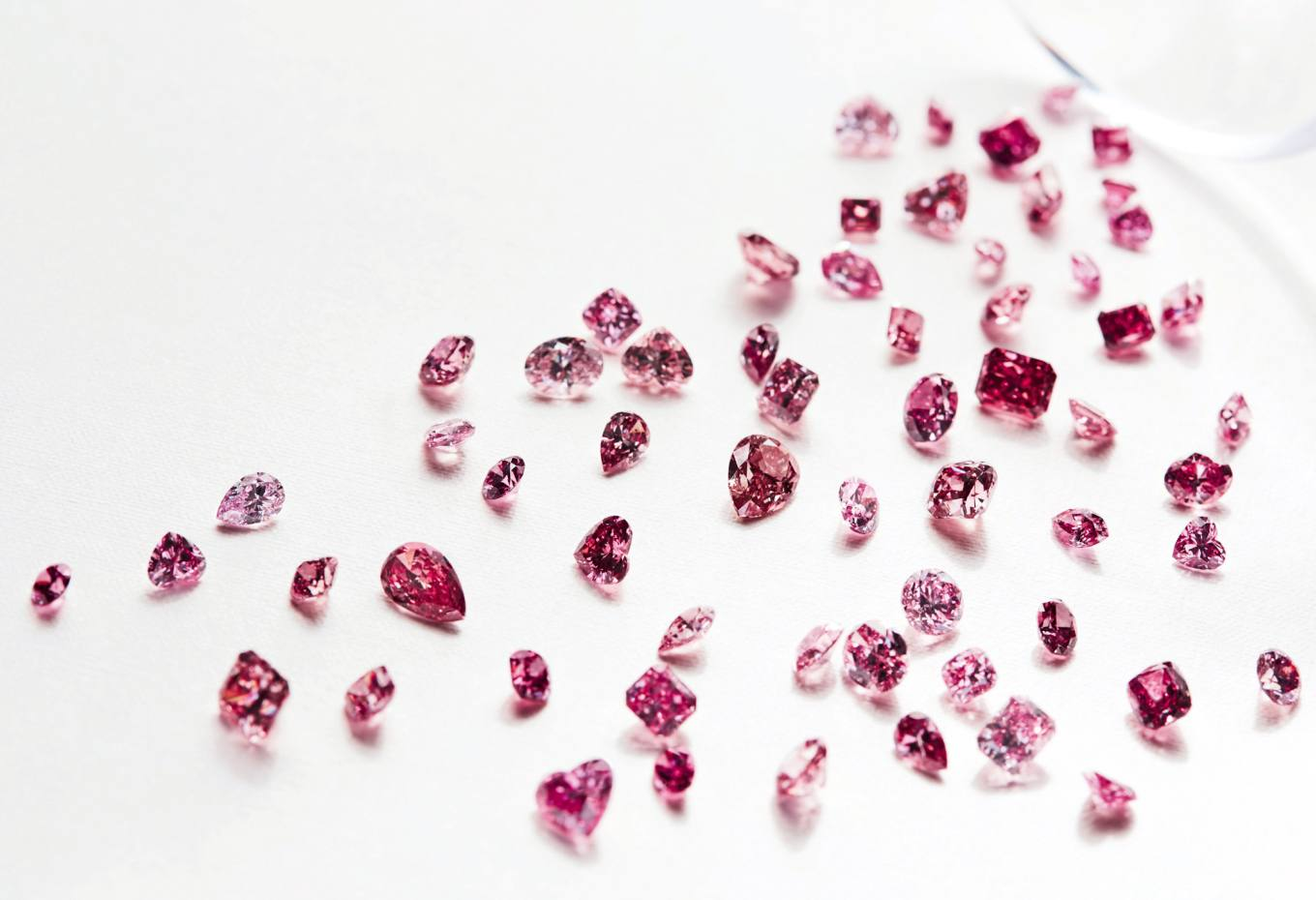 There are 64 stones in this year's Tender – a collection of the finest, largest and most colour-rich pink diamonds produced at the Argyle mine