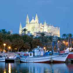 The Palma Cathedral and harbour