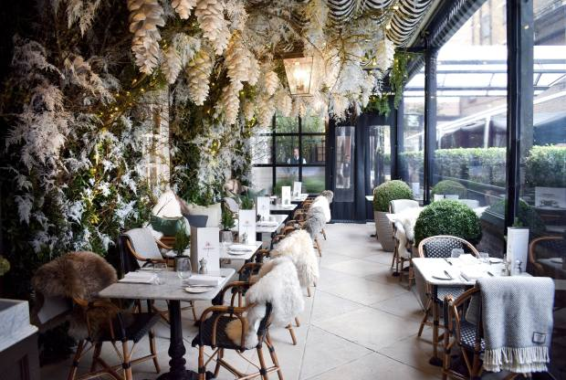 Dalloway Terrace has been transformed into a Narnia-esque reverie by Nikki Tibbles