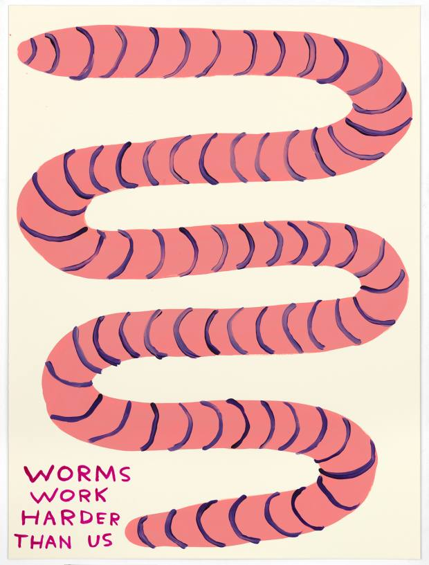 Shrigley drew inspiration from nature to produce 36 drawings such as Worms Work Harder Than Us