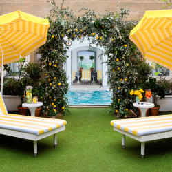 The Ritz London's Secret Garden Bar