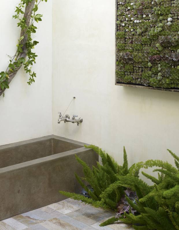 One of Grubb's framed vertical gardens in a San Francisco courtyard