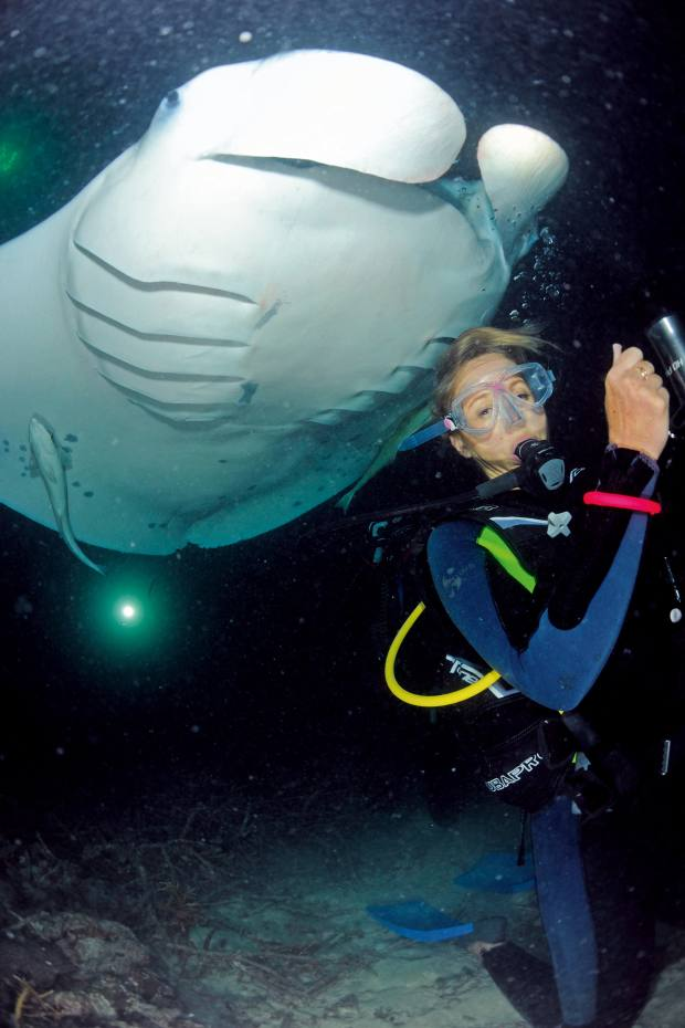 The author meets manta rays during a night dive with the Manta Trust, one of whose projects is based at the Four Seasons Resort Maldives