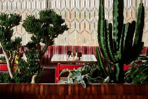 Decorative macramé drapery by Peru's Cristina Colichón hangs at the windows of the restaurant