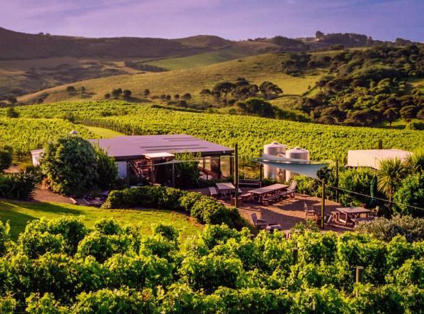 The Shed restaurant, Te Motu Vineyard, overlooking Waiheke Island's Onetangi Valley