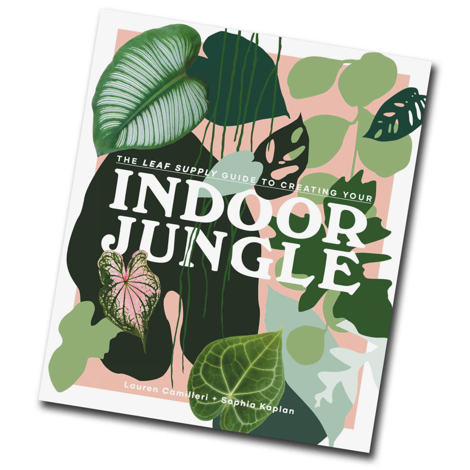 The Leaf Supply Guide to Creating Your Indoor Jungle by Lauren Camilleri and Sophia Kaplan (Smith Street, £25)