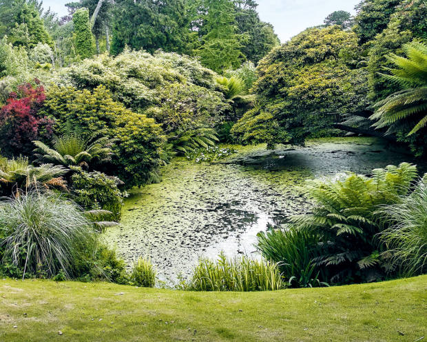 The LostGardens ofHeligan inCornwall