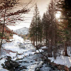 Val di Luce is set amid the pine and birch forests of the Tuscan Appennines.