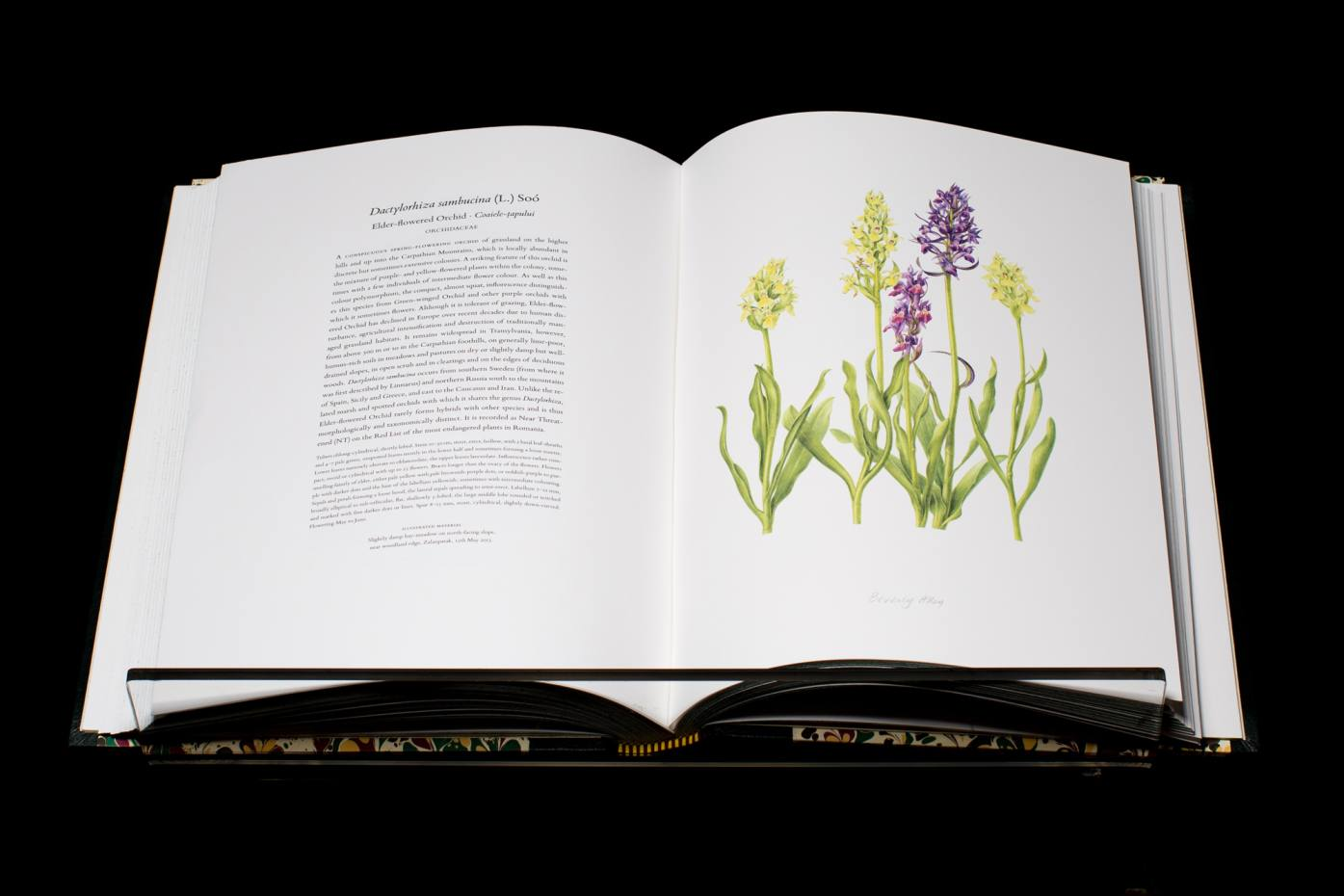 Every volume of The Transylvania Florilegium is signed by the Prince of Wales