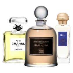 From left: Chanel No 19 eau de toilette spray, £62 for 50ml; extrait de parfum, £95 for 7.5ml; and eau de parfum, £105 for 100ml
