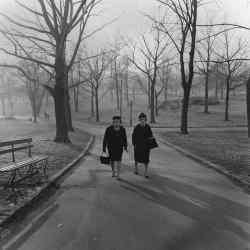 Two Ladies Walking in Central Park