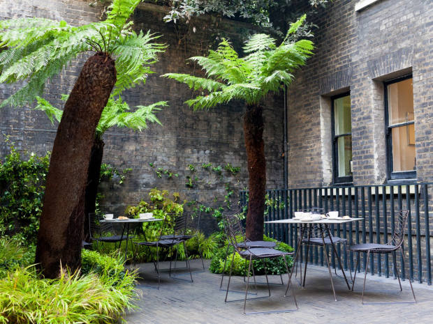 Club members can relax in landscape architect Tom Stuart-Smith's lush garden space with its arching tree ferns
