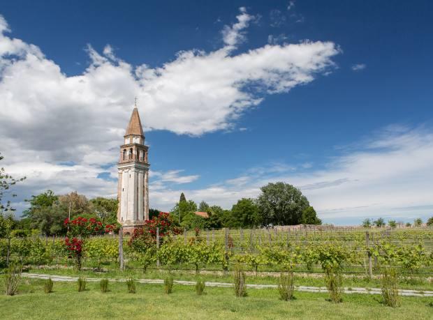 Venissa restaurant's walled vineyard