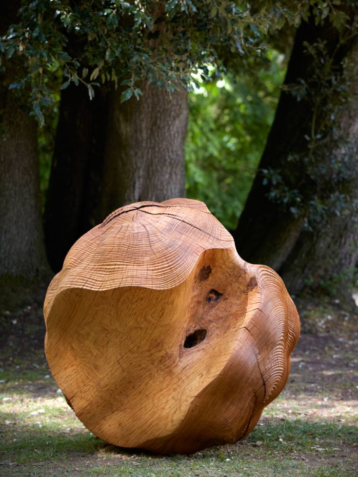 Xylosphere I, by Alison Crowther