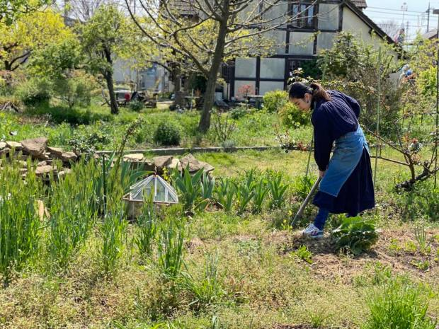 A Kitchen Farming Project in Kyoto