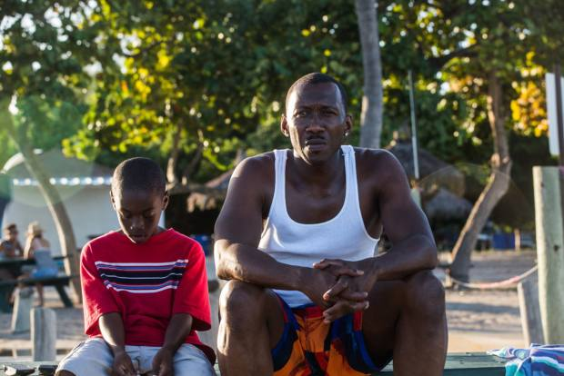 Moonlight (2016) tells the story of Chiron, an African-American man living in Miami, as he comes to terms with his sexuality