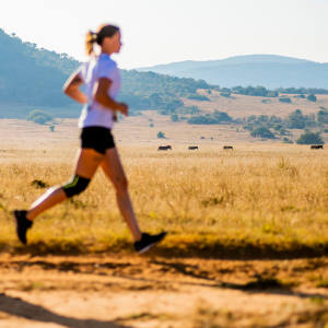Runners in the Big Five Marathon across Entabeni Game Reserve, South Africa