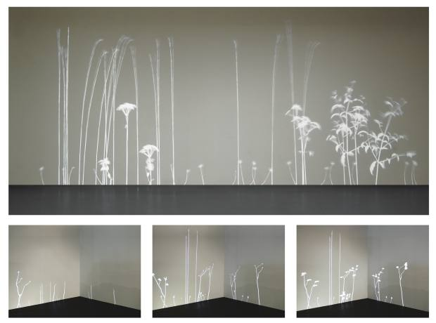 Lightweeds by Simon Heijdens, price on request.