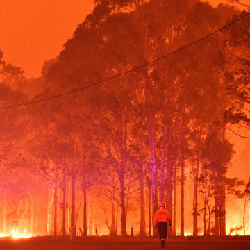 Recent bushfires around the New South Wales town of Nowra