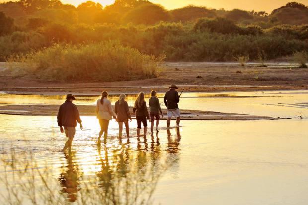 Kichaka founder Andrew Molinaro guides guests on walking safaris