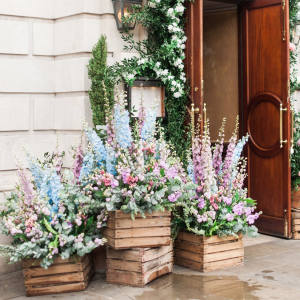 Botanical-themed events are blossoming across London in homage to the RHS Chelsea Flower Show