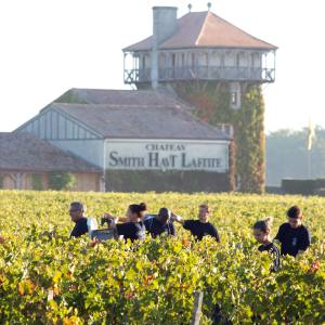 Château Smith Haut Lafitte made an excellent set of wines in Pessac-Léognan