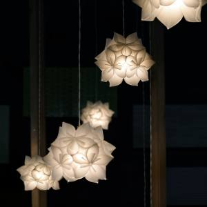Chihiro Tanaka polycarbonate Sakulights, about £435, from Studio Noi