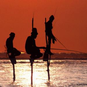 Artisan fishing in the Indian Ocean off Sri Lanka.